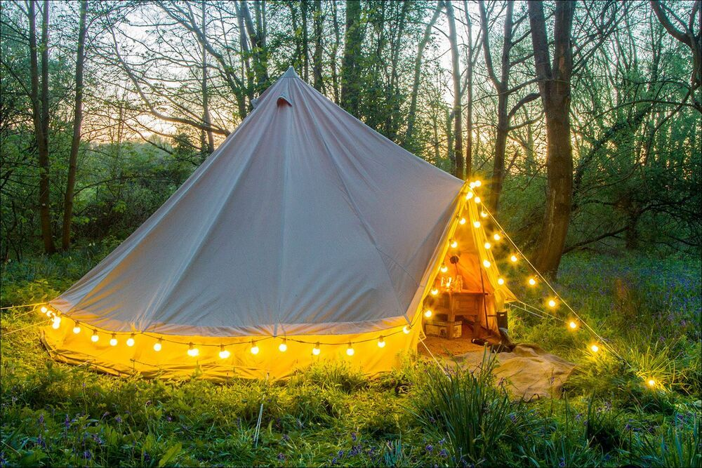 A bell tent pitched in woodland at dusk