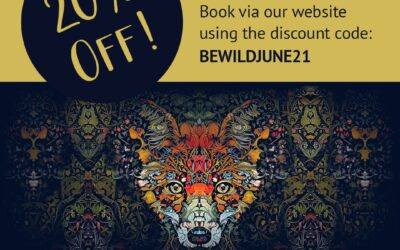 BE WILDER BOOKINGS NOW LIVE! BOOK NOW FOR 20% OFF